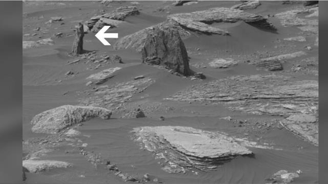 Mars'ta orman kalıntıları mı var? Dünya bu görüntüyü konuşuyor...