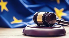 AİHM, FETÖ mensuplarının yaptığı 30 bin 63 başvuruyu reddetti