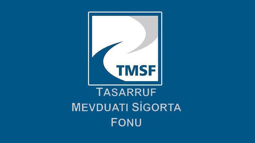 TMSF iki şirketi satışa çıkardı