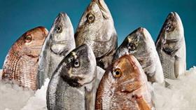 Su ürünleri ihracatçıları, 2023 hedefini 500 milyon dolar büyüterek 3,5 milyar dolara yükseltti