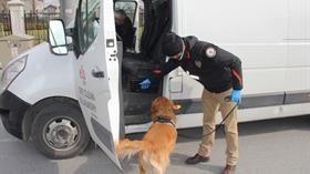 İçişleri Bakanlığı duyurdu: Aranan 3 bin 673 kişi yakalandı