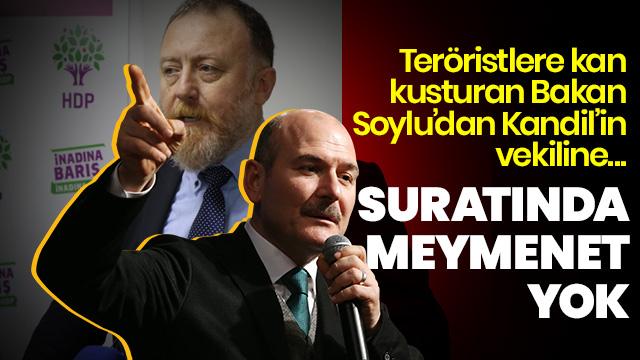 Soylu'dan HDP Eşbaşkanı'na: Suratında meymenet yok