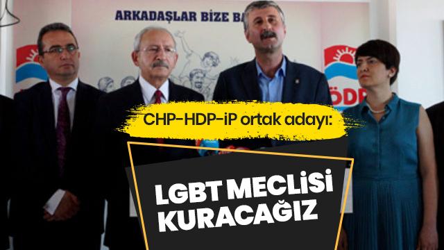 'LGBT meclisi kuracağız'