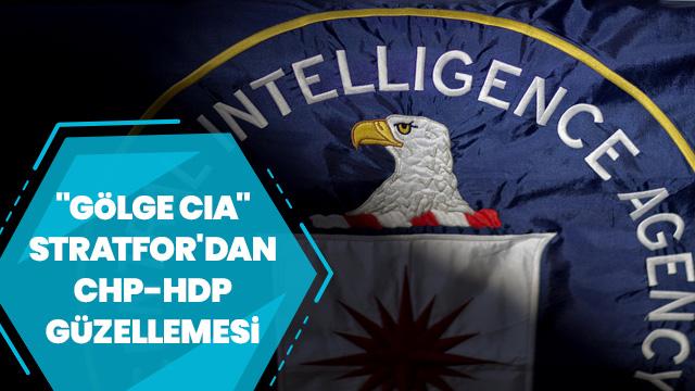 'Gölge CIA' Stratfor Türkiye'yi hedef aldı