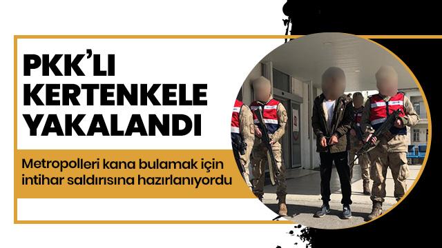 Irak'ta bomba eğitimi alan PKK'lı terörist İzmir'de yakalandı