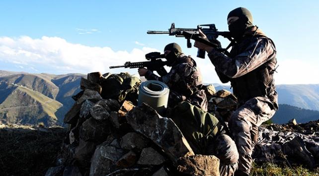 Terör örgütü PKK'ya yönelik operasyonlarda Muş'ta geçen yıl 12 terörist etkisiz hale getirildi