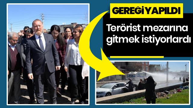 Terörist mezarına gitmek isteyen HDP'lilere izin verilmedi