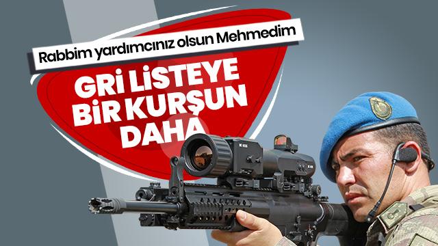 Mardin Dargeçit'te öldürülen teröristin Gri listede olduğu tespit edildi