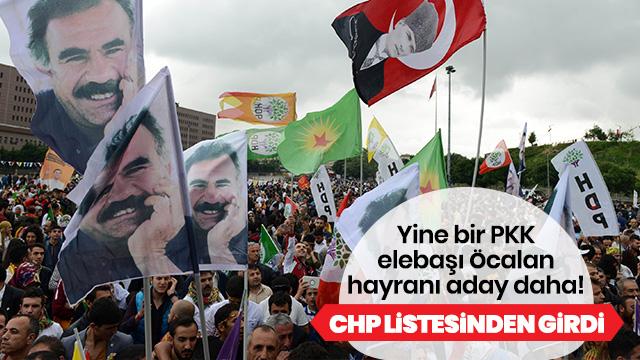 CHP buluşma tesadüfi dedi, adaylar HDP'li çıktı