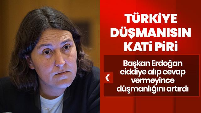 Türkiye düşmanı Kati Piri haddini aştı