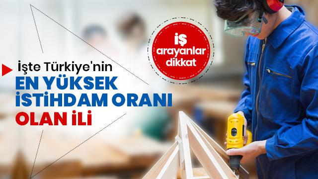 İşte Türkiye'nin en yüksek istihdam oranı olan ili