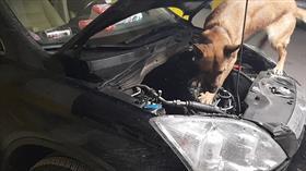 Eskişehir'de otomobile mıknatısla gizlenen 57,6 kilogram eroin ele geçirildi