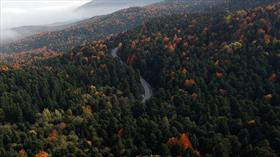 Fransa ile 150 milyon avroluk 'ormancılık' anlaşması