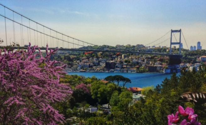 İstanbul Boğazı'nda Erguvan zamanı!